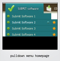 Pulldown Menu Homepage