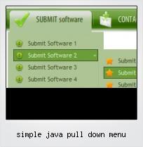 Simple Java Pull Down Menu
